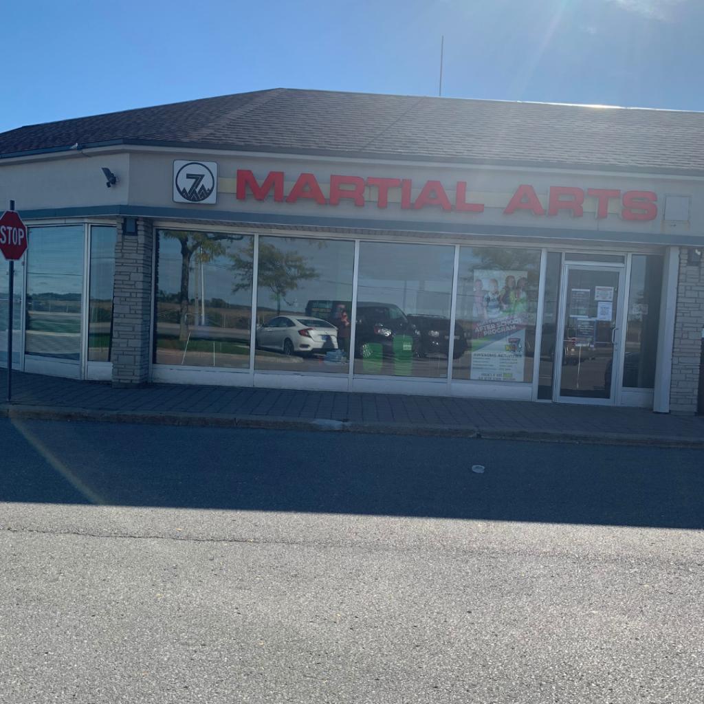 Silver 7 Martial Arts